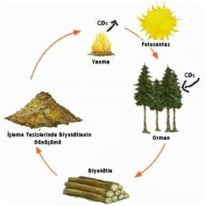 biyokutle_enerjisi2