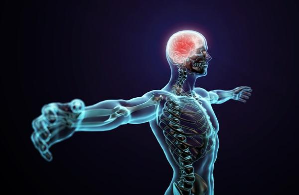 insan vucudu elektrik