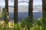 Apple'dan temiz enerji