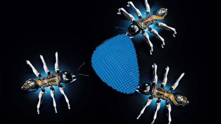 Festo Doğadan Öğrenme Kapsamında Üç Yeni Robot Tanıttı