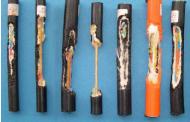 Kemirgenlere Karşı Korumalı Fiber Optik Kablolar