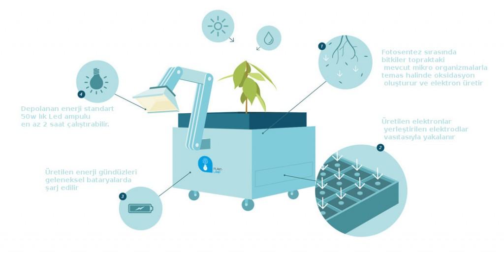 bitki lambası nasıl çalışır