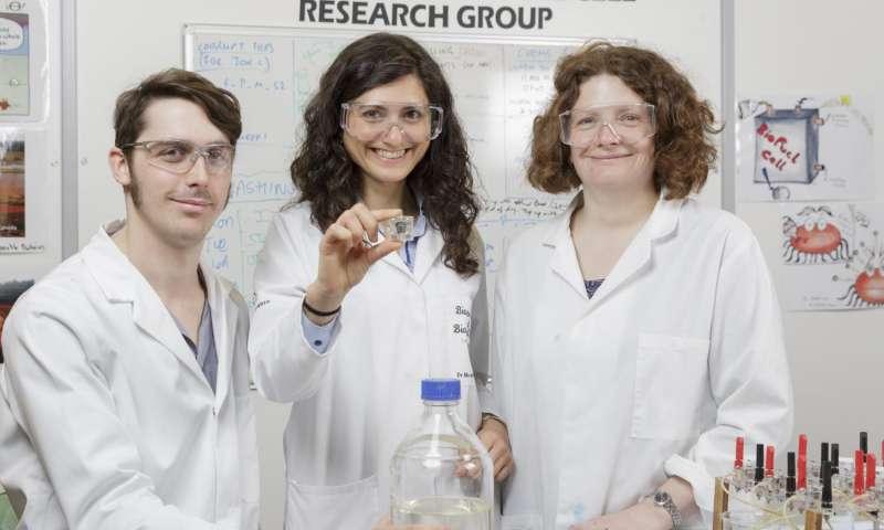 (Sol sağa): Doktora Öğrenci Jon Chouler; Kimya Mühendisliği, Dr. Mirella Di Lorenzo Bölümü Kıdemli Öğretim Görevlisi; Kimya Bölümü, Dr. Petra Cameron Kıdemli Öğretim Görevlisi.