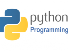 Python programlama dili nedir? Neden bu kadar önemli?